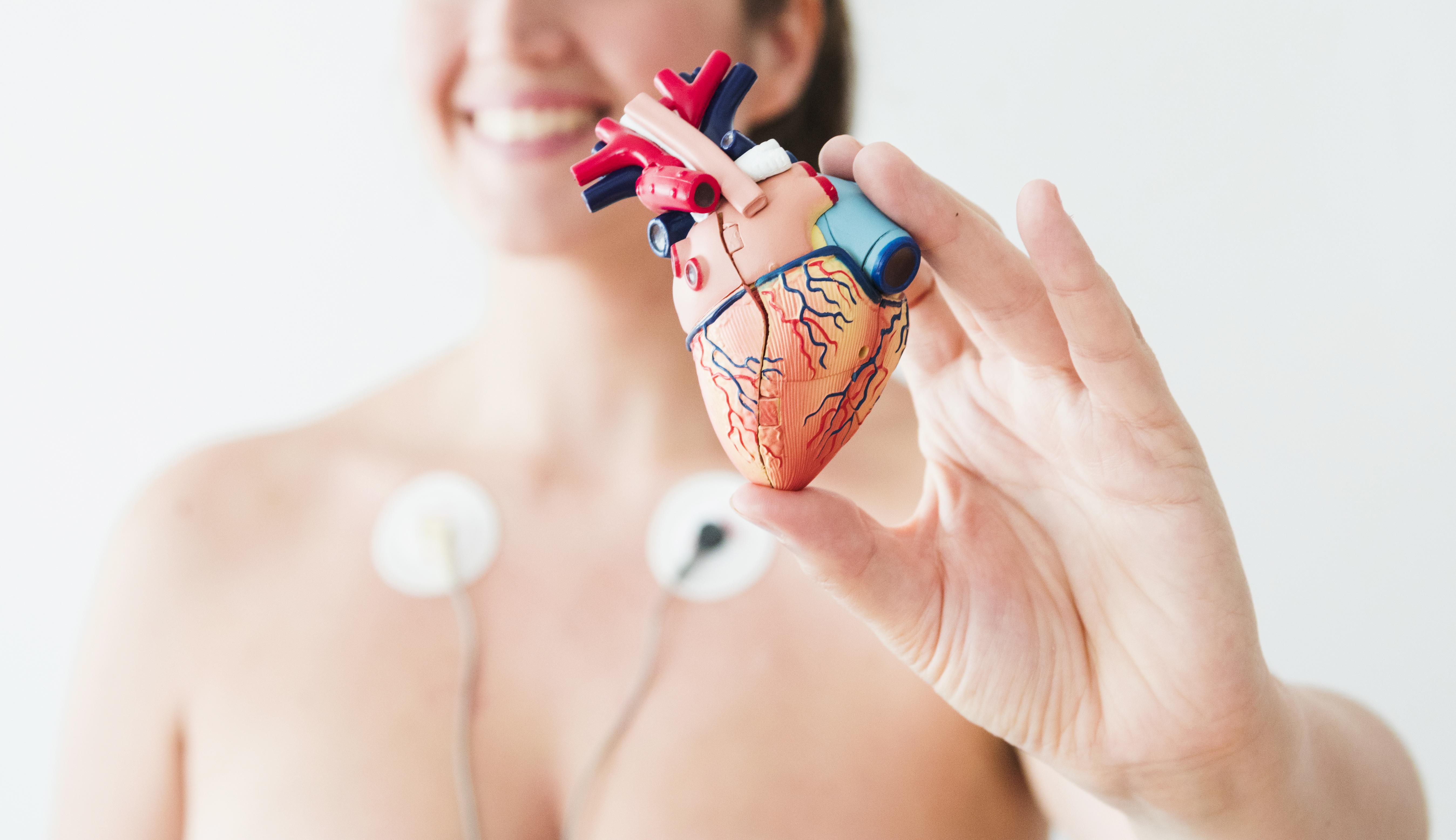 Holter de 24 horas- ECG